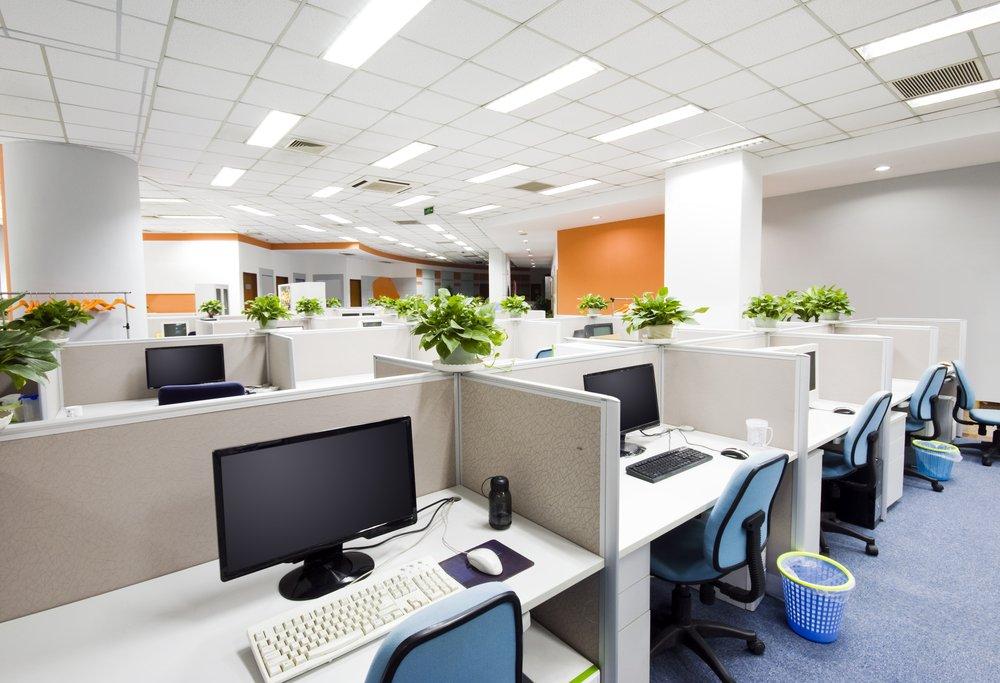 cubiculos con plantas