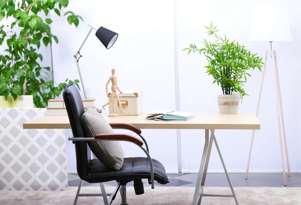 oficina decorada con plantas
