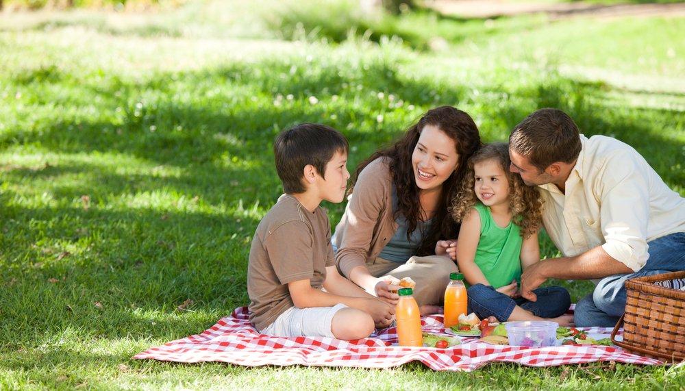 picnic en familia alimentacion saludable