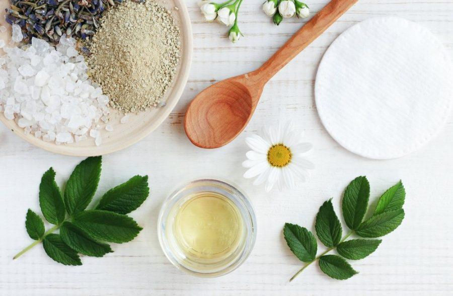 2.plantas medicinales medicina alternativa