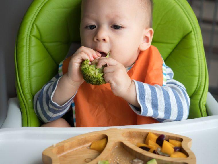 bebé comiendo brocoli alimento blw