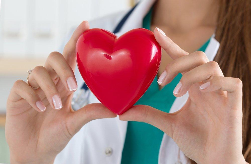 doctora sosteniendo corazón de juguete