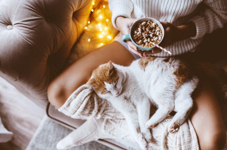 Mujer con gato- Claves para evitar el estrés de diciembre