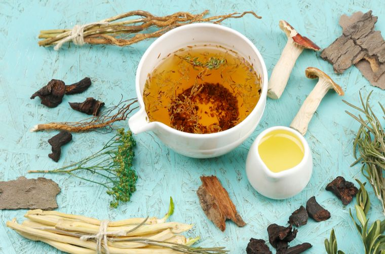 Plantas de medicina tradicional sobre fondo azuk