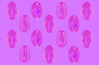 vulvas y vaginas