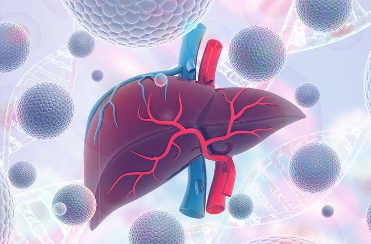 Qué es la hepatitis: síntomas, causas y tratamiento | DoctorAkí