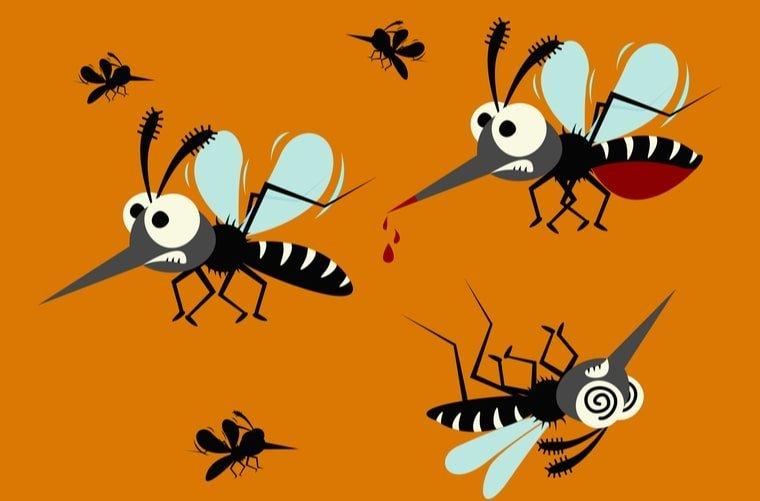 Ilustración mosquitos