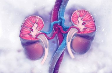 Cómo cuidar los riñones