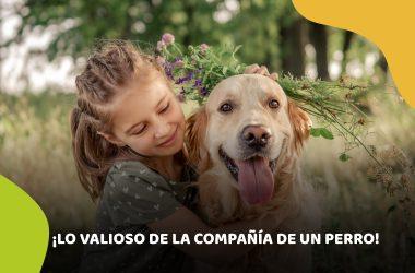perro y salud